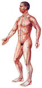 meridiens-acupuncture
